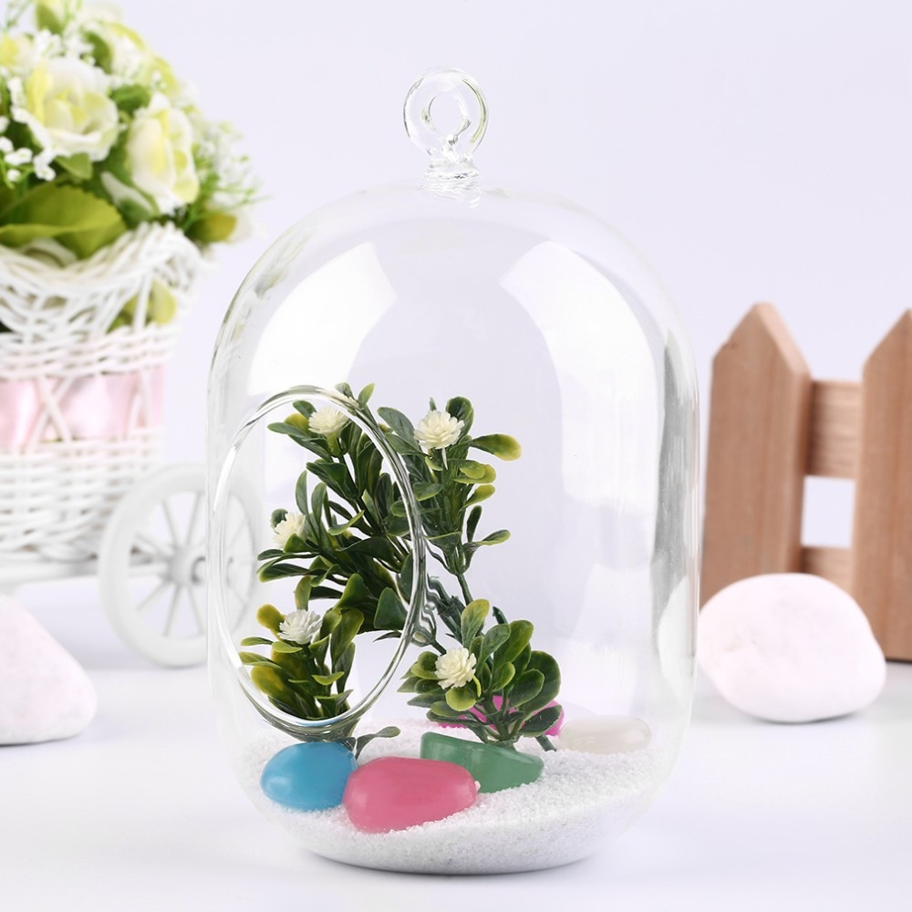 14 glass vase of 2017 clear glass vase hanging terrarium succulents plant landscape in getsubject aeproduct