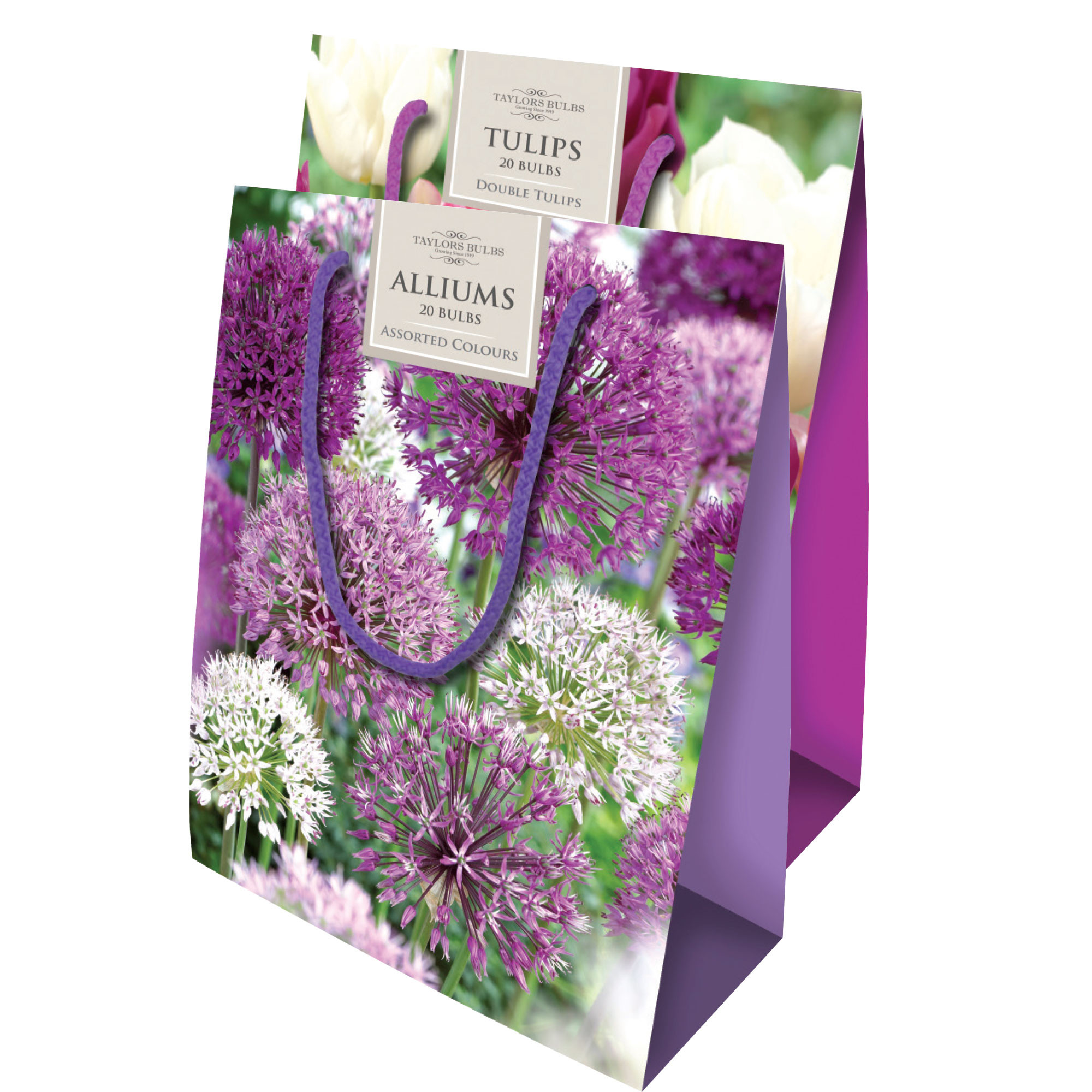 19.99 flowers with free vase of planters garden centre planters garden centre in allium tulip gift bags