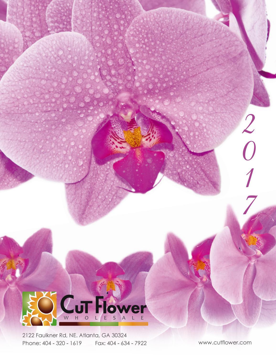 24 pilsner vase wholesale of 2017 cut flower wholesale catalog by cut flower wholesale inc issuu with page 1