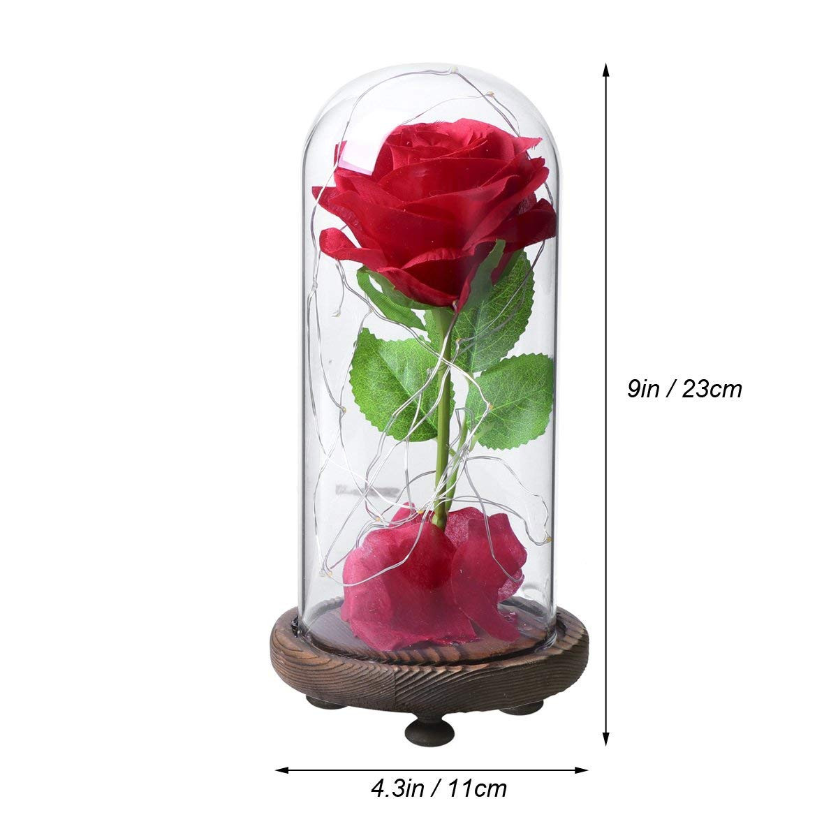 24k forever rose and engraved vase of amazon com ledmomo red silk rose and led light with fallen petals pertaining to amazon com ledmomo red silk rose and led light with fallen petals in a glass dome on wooden base gift for home decor mothers day gift valentines day