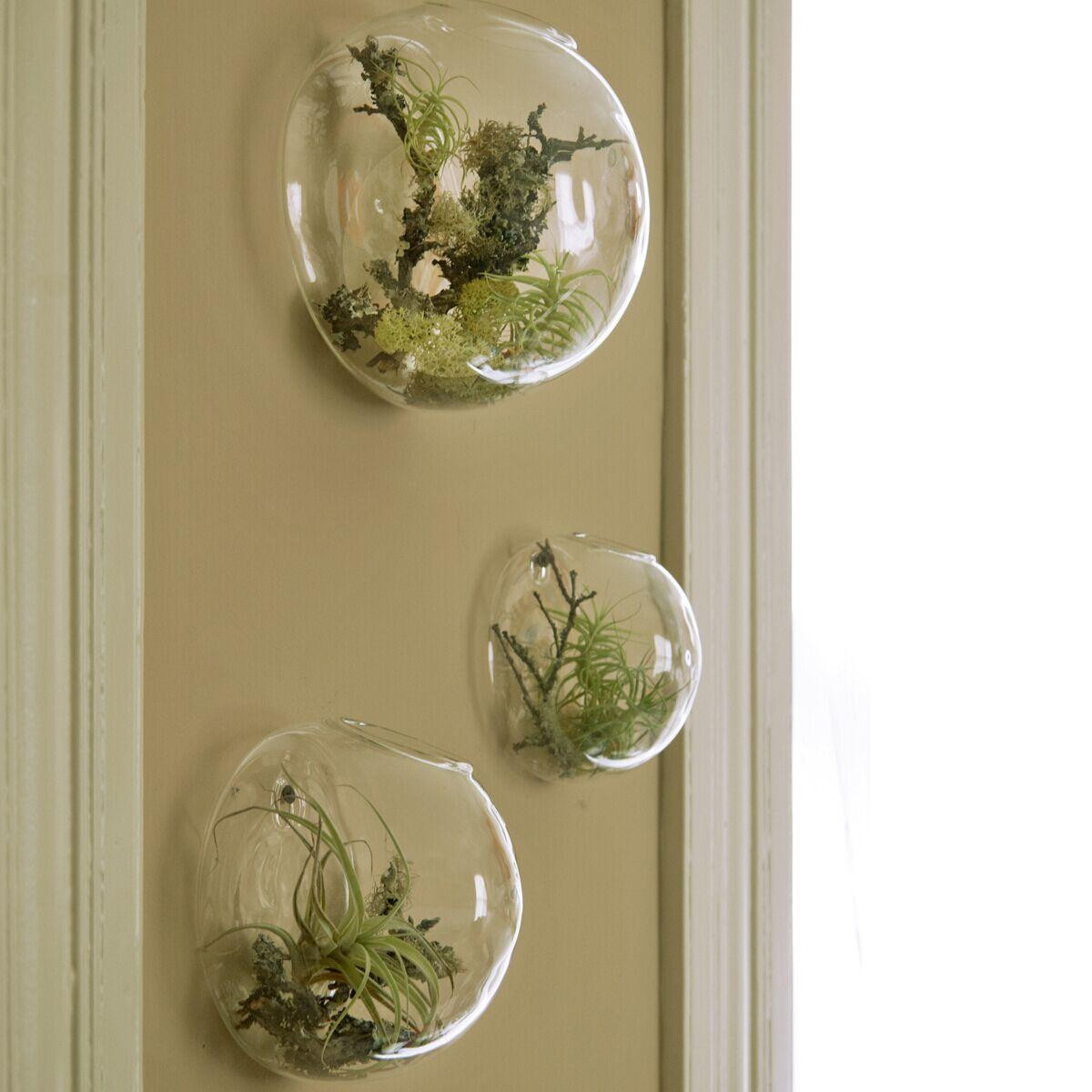 3 piece glass vase set of wall bubble terrariums glass wall vase for flowers indoor plants throughout wall bubble terrariums glass wall vase for flowers indoor plants wall mounted planter for succulents air plant holders home decor inexpensive floor vases