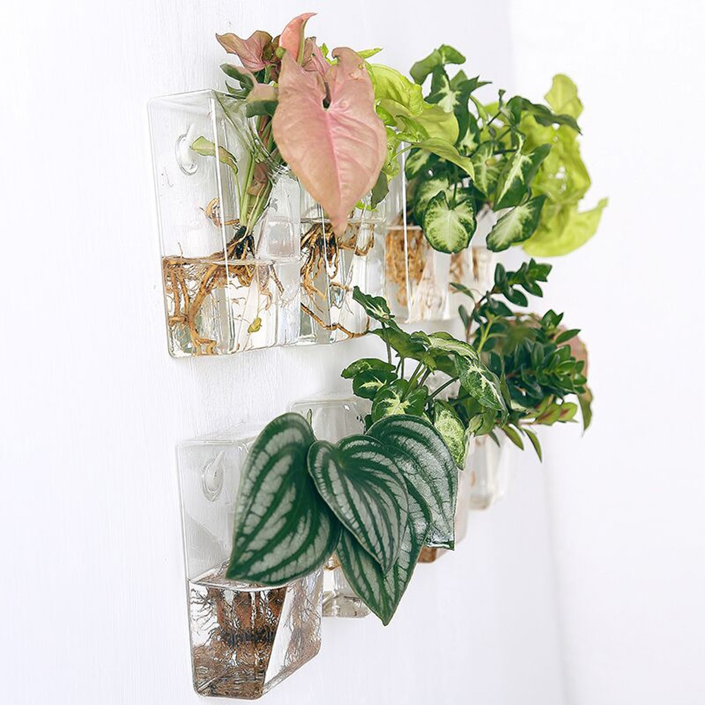 6 glass cube vase of cube shape wall hanging transparent glass flower vase air plant intended for cube shape wall hanging transparent glass flower vase air plant hydroponic pot terrarium bottle home living room decorative in vases from home garden on