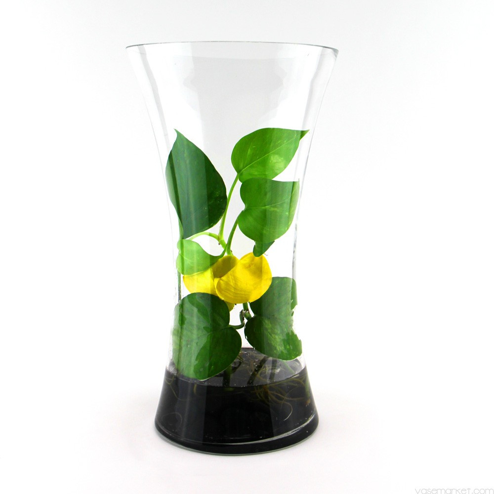 6x6 square glass vase of 16 inch tall clear cylinder glass flare vase regarding glass flare vase gcu030