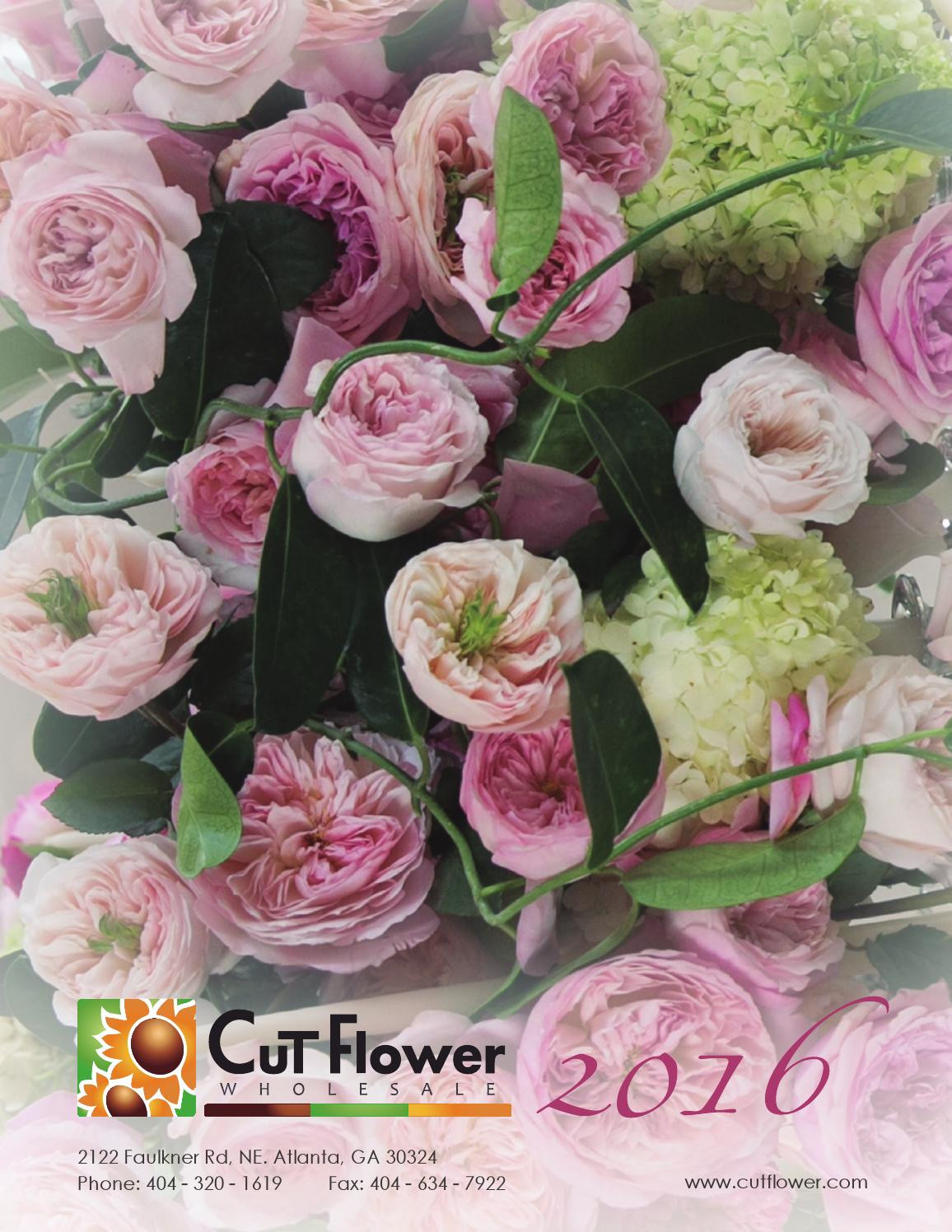 6x6 square glass vases bulk of 2016 cut flower wholesale catalog by cut flower wholesale inc issuu with regard to page 1