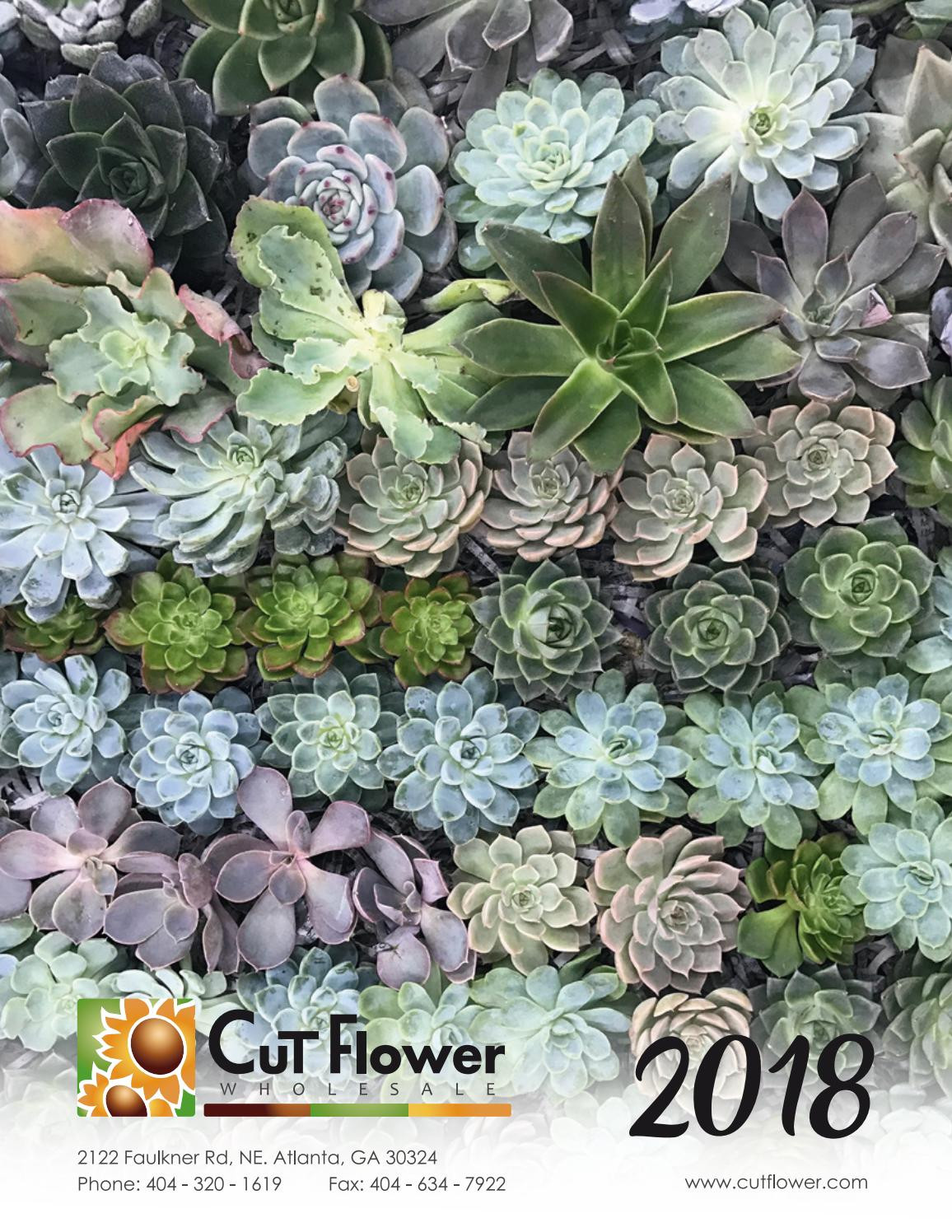 6x6 square glass vases bulk of 2018 cut flower wholesale catalog by cut flower wholesale inc issuu intended for page 1