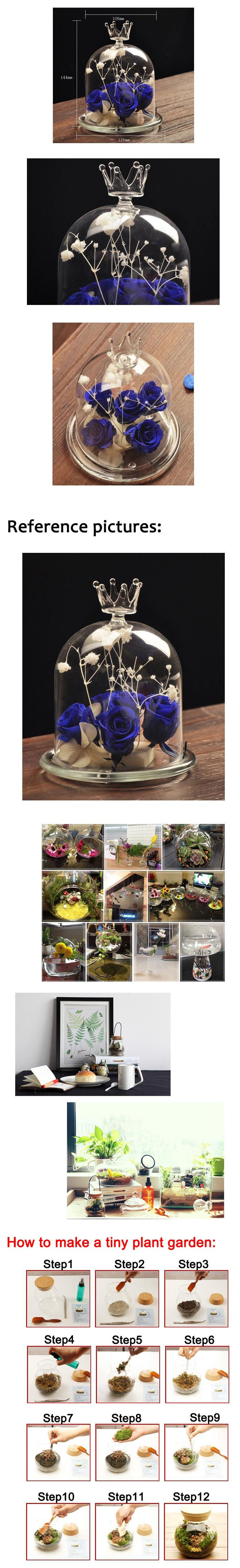8 inch glass vase of 5 6 inches transparent flower plant vase crown glass cloche vases with import duties taxes and charges