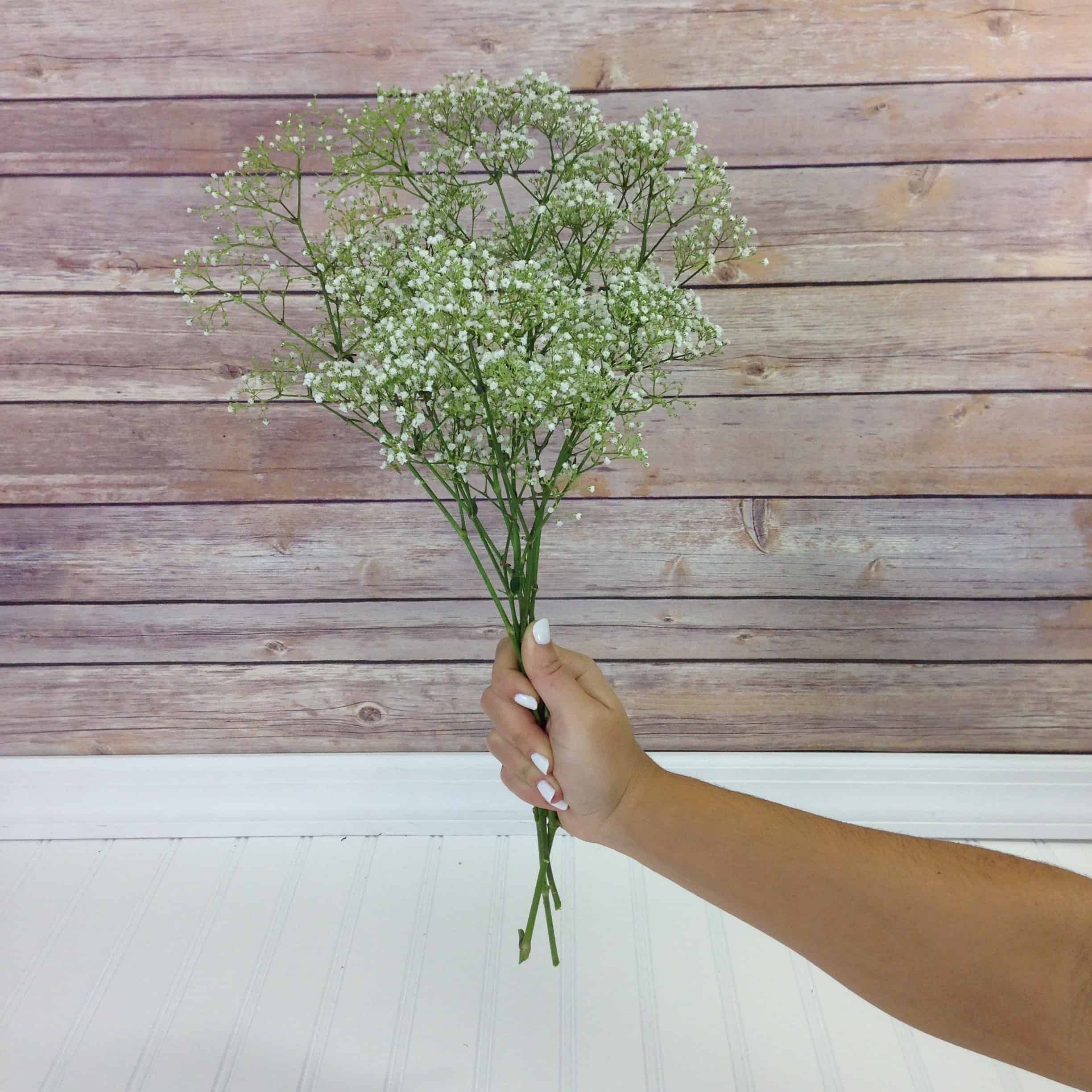 9 inch bud vase of how much babys breath do i need with babys breath bunch