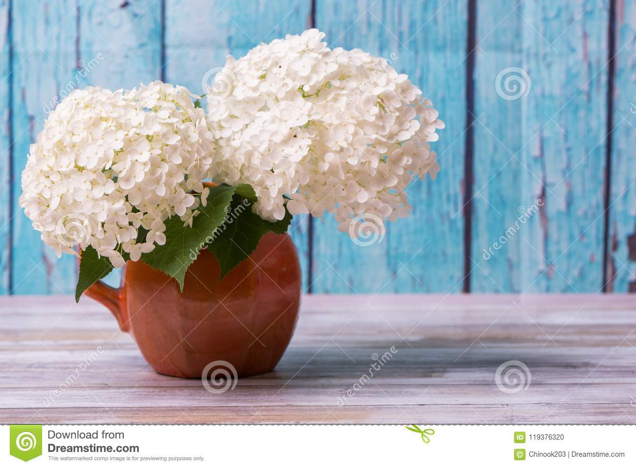 antique green pottery vase of white hydrangea flowers in a rustic vase with blue background stock pertaining to white hydrangea flowers in a rustic vase with blue background