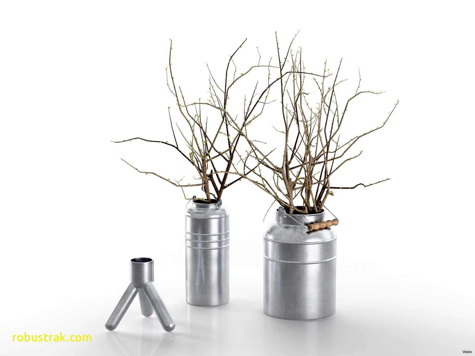 artificial branches for vases of new branches in vase as decoration home design ideas with regard to branches 20in 20vase 20bucket 201h vases in vase bucketi 4d