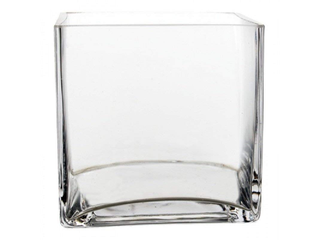Ashland Cube Glass Vase Of Amazon Com 12pc Clear Square Glass Vase Cube 5 Inch 5 X 5 X 5 with Regard to Amazon Com 12pc Clear Square Glass Vase Cube 5 Inch 5 X 5 X 5 Twelve Vases Home Kitchen