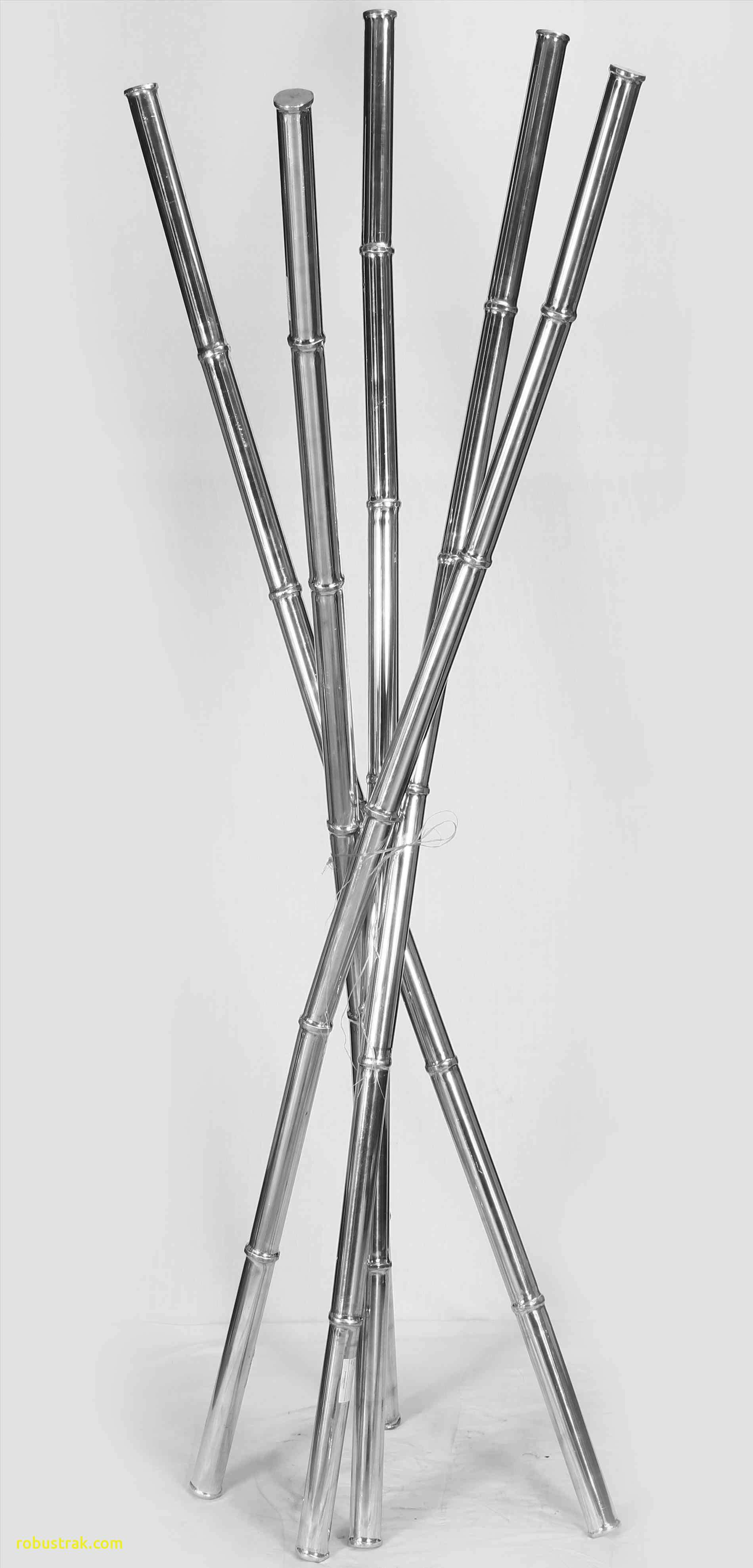 Bamboo Floor Vase Of Inspirational Decor Sticks In A Vase Home Design Ideas In Accessory Tea Bamboo Sticks In Vase Extraordary Tall S then Pterest H Vases 8d