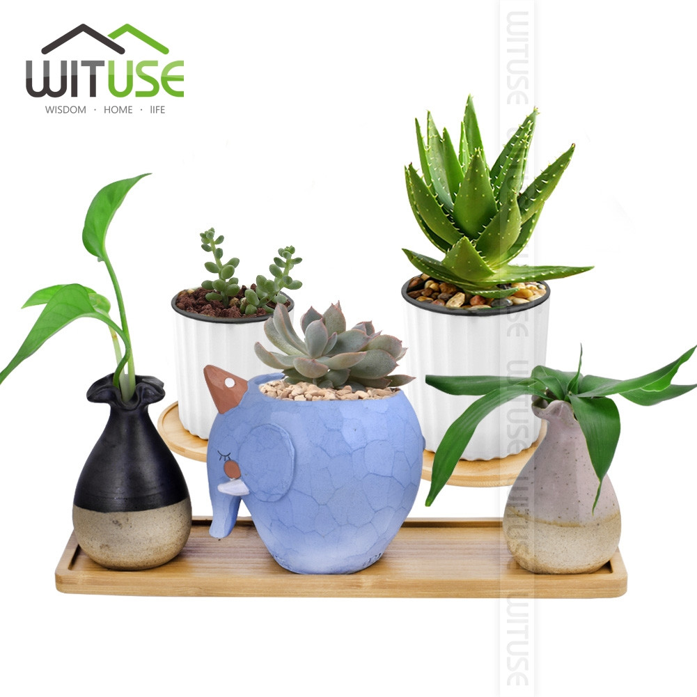 bamboo plant with vase of wituse free shipping grow plants potted landscape desktop bonsai with regard to grow plants potted landscape desktop bonsai home decorations small vases square round flower pots trays in flower pots planters from home garden on