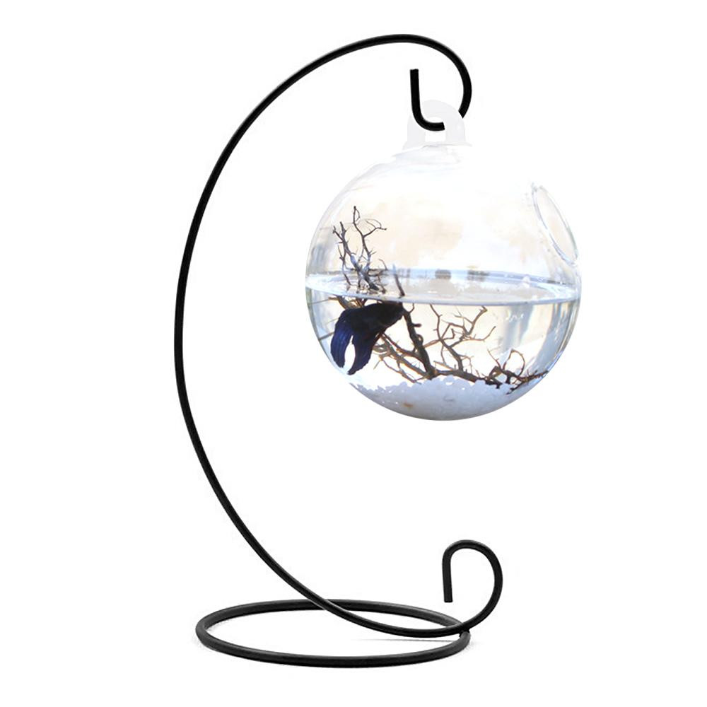betta fish and plant vase of aquariums tanks bowls buy aquariums tanks bowls at best in 15cm diameter round shape hanging glass fashion fish bowl aquarium tank flower plant vase home decoration