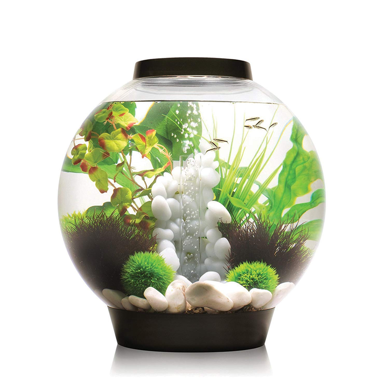 betta vase kit of amazon com biorb classic 15 aquarium with led light 4 gallon for amazon com biorb classic 15 aquarium with led light 4 gallon black aquarium starter kits pet supplies