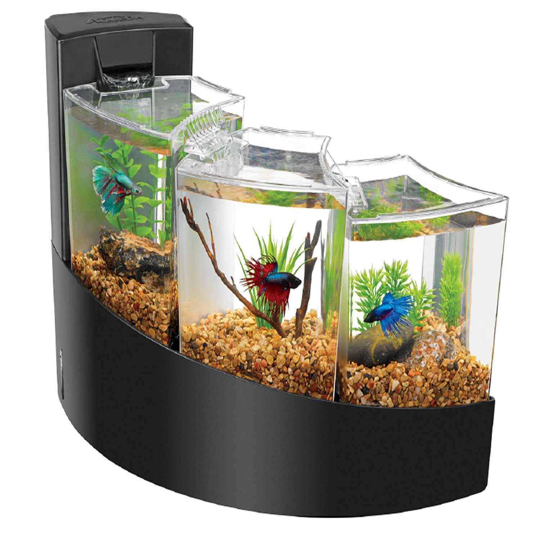betta vase kit of aqueon betta falls aquarium kit betta fish aquarium pinterest pertaining to aqueon betta falls aquarium kit