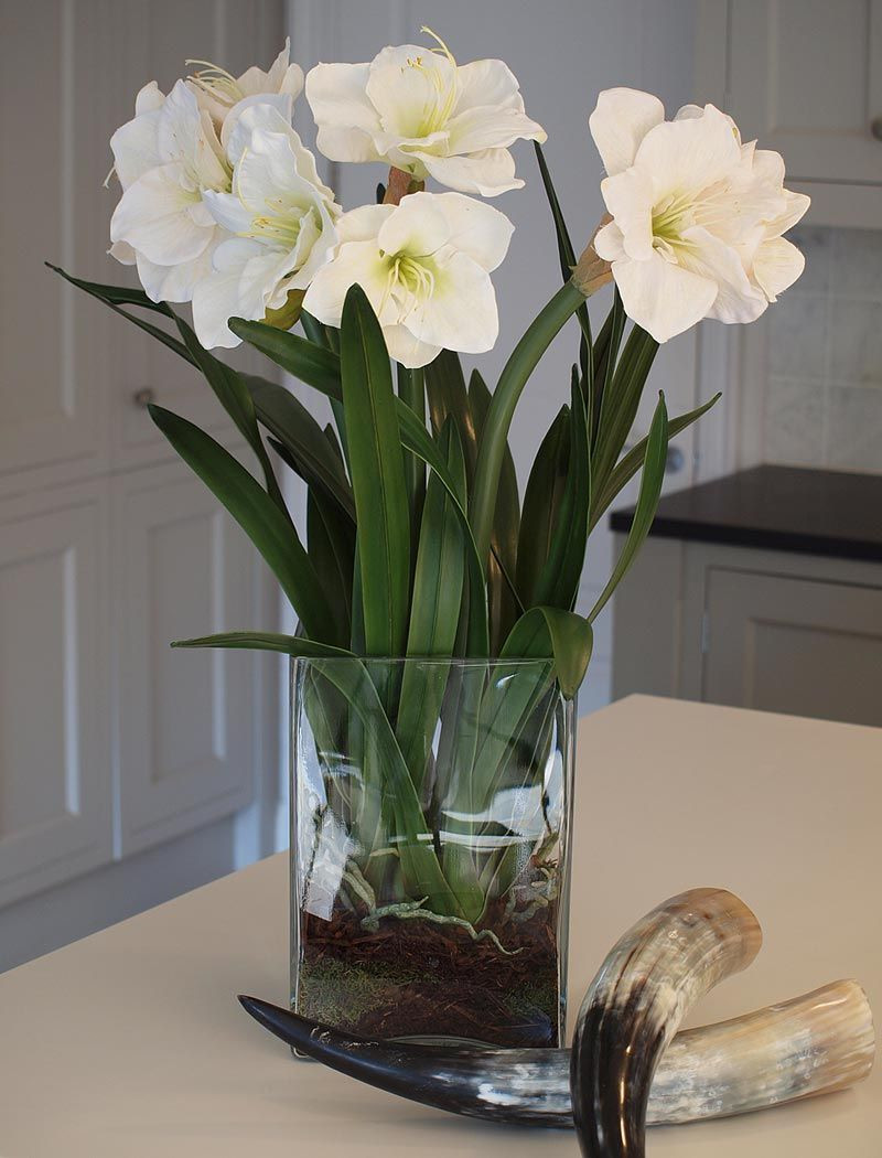 Black Glass Cube Vase Of Amaryllis In Tall Glass Cube White Rtfact Artificial Silk within Amaryllis In Tall Glass Cube White Rtfact Artificial Silk Flowers orchid Vase