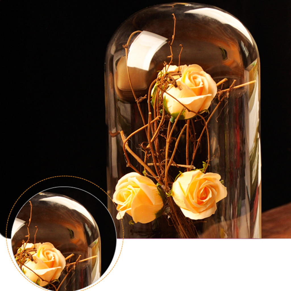 blown glass vase on wood of glass cover landscape vase dome with tray plant flower terrarium intended for glass cover landscape vase dome with tray plant flower terrarium container birthday gift diy home desk cafe wedding decoration in vases from home garden