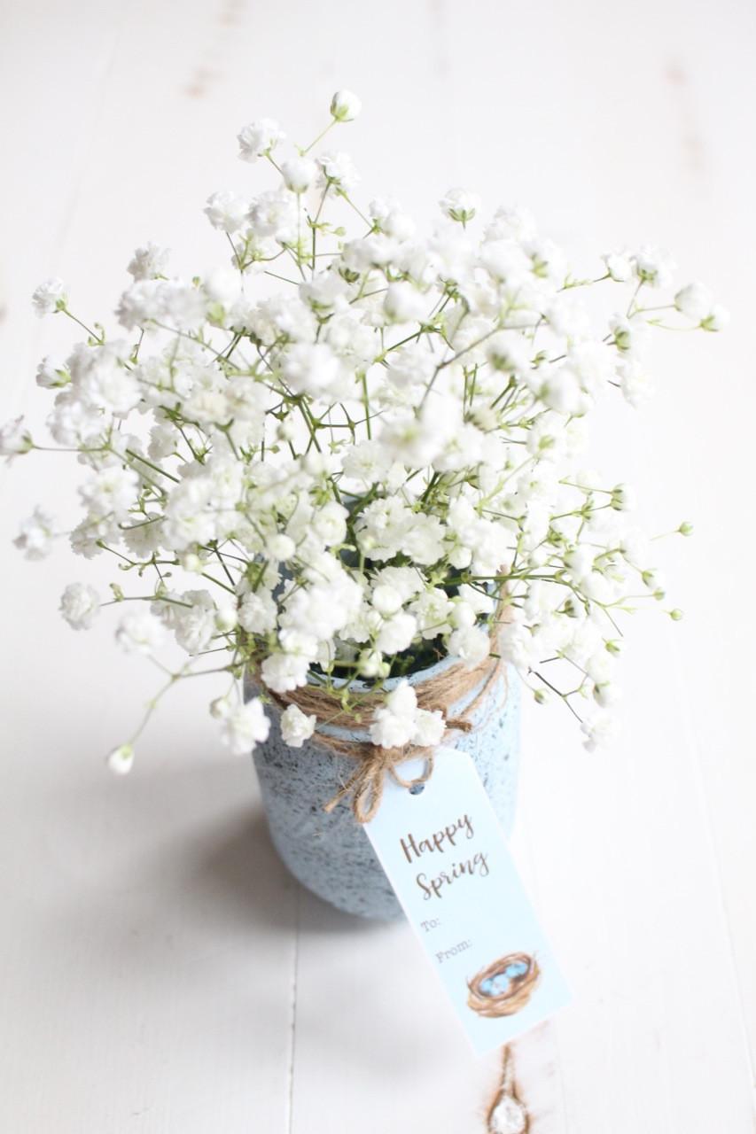 blue mason jar vase of speckled robins egg mason jar with regard to happy spring tag on jar