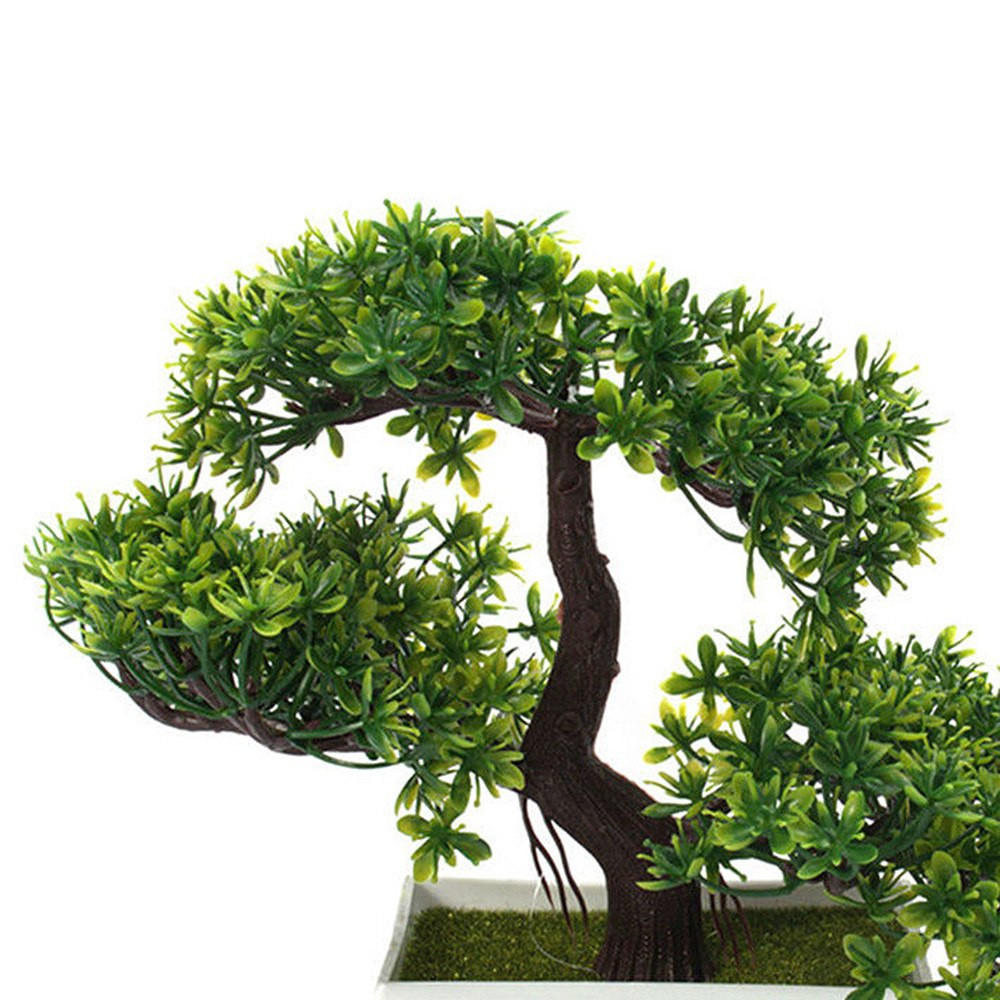 25 Wonderful Bonsai Tree Vase