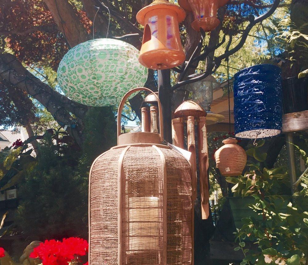 bulb forcing vases wholesale of clarkes garden and home inside fullsizerender