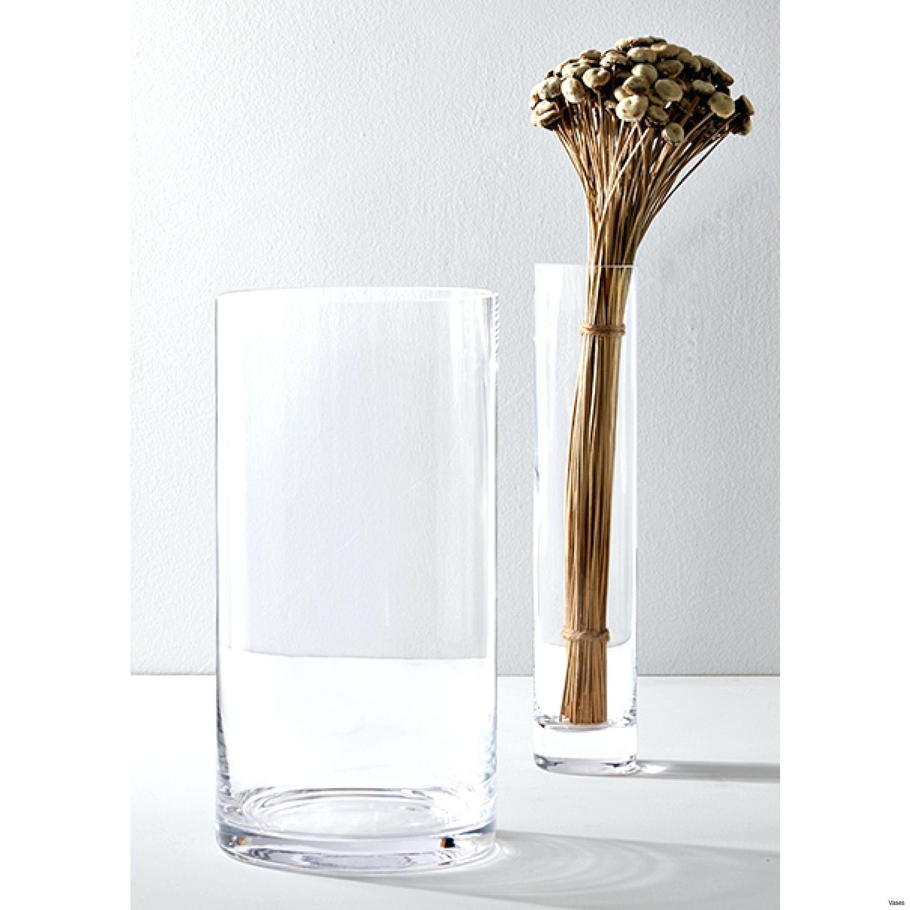 Bulk Glass Vases for Wedding Of Beautiful Dollar Tree Sign 2018 Ogahealth Com Pertaining to Glass Cylinder Vases Bulk Uk Dollar Tree Tall Cheap Gallery Also Bulkh Bulki 0d