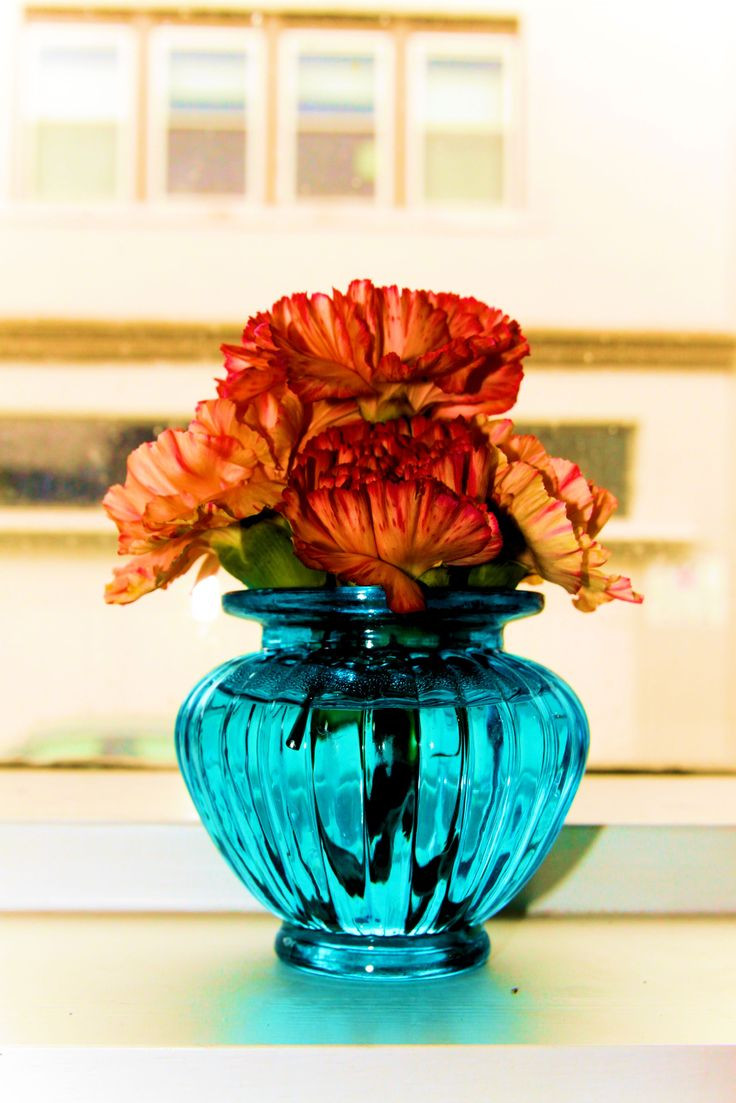 bulk vases canada of 38 best living room images on pinterest turquoise centerpieces in dyi wedding flowers carnations can be stunning bulk orange carnations from internet and bulk