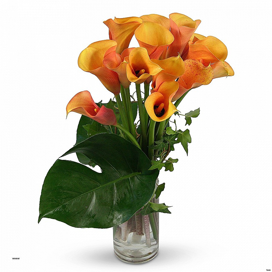 Calla Lily Tall Vase Of Wall Sconces Flower Wall Sconces Elegant Table with Vase Lovely with Regard to Large Size Of Wall Sconceslovely Flower Wall Sconces Flower Wall Sconces Best Of Black