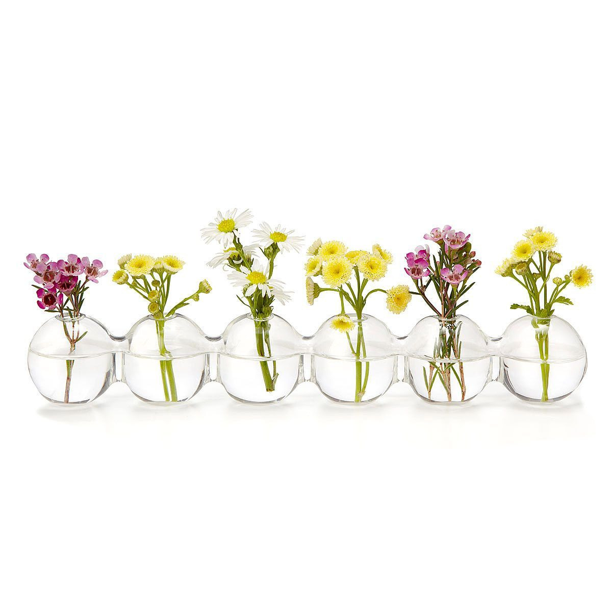 ceramic bud vases wholesale of caterpillar bud vase bulbs display and glass with this bud vase with a row of attached glass bulbs allows you to create elegant floral displays
