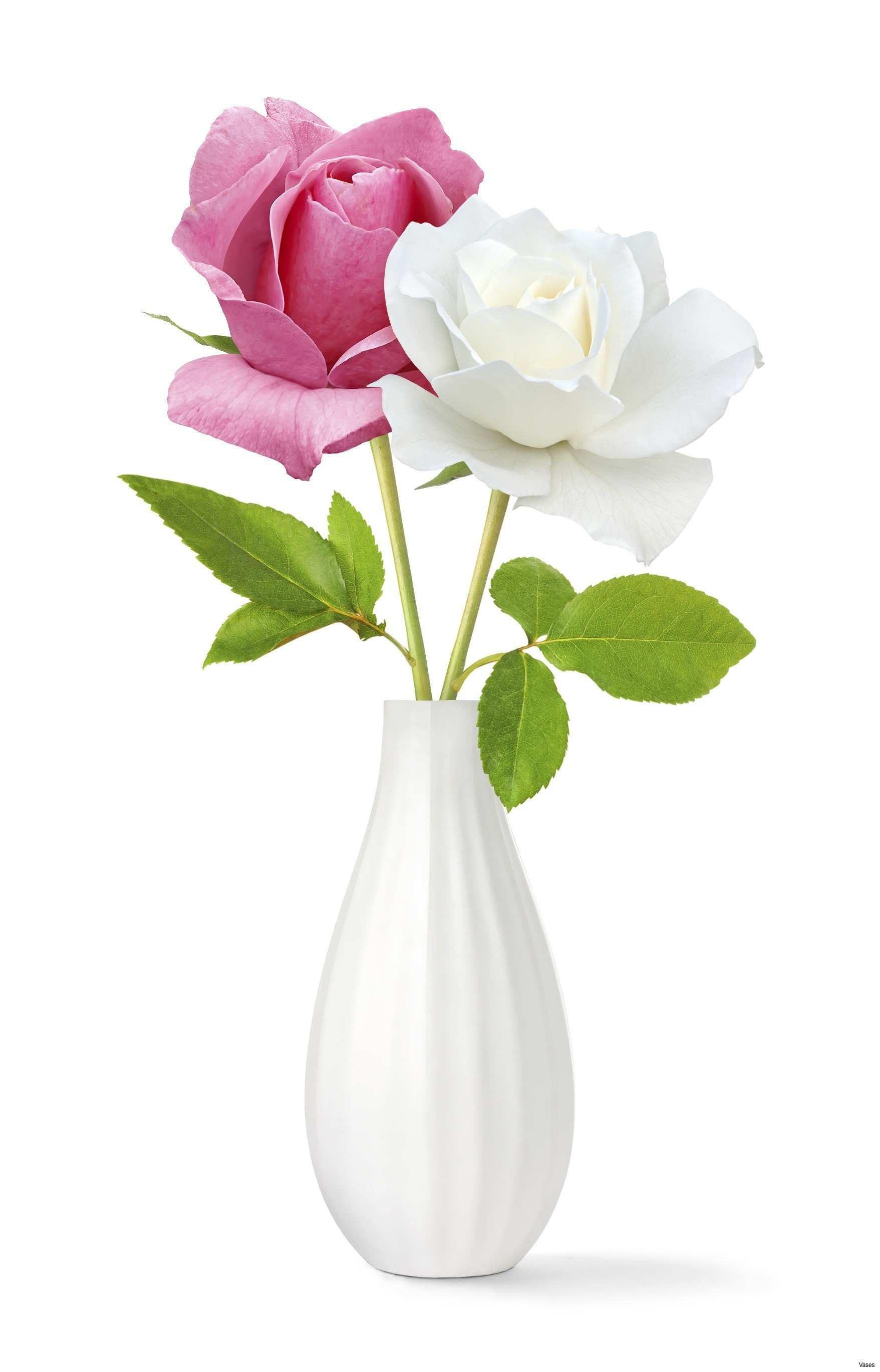 cheap wholesale flower vases of best garden flowers luxury roses red in a vase singleh vases rose throughout best garden flowers luxury roses red in a vase singleh vases rose single i 0d scheme