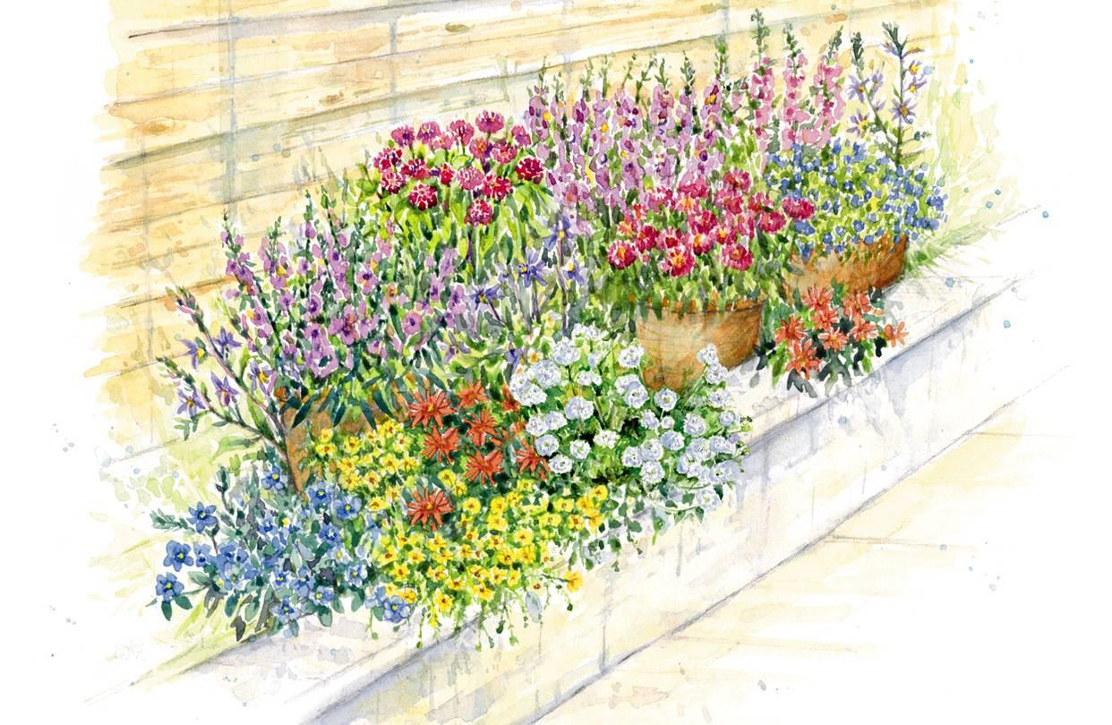 clear gel for flower vases of feisty not thirsty the 7 best drought tolerant flowers wsj inside od bo385 flower gr 20170613175317
