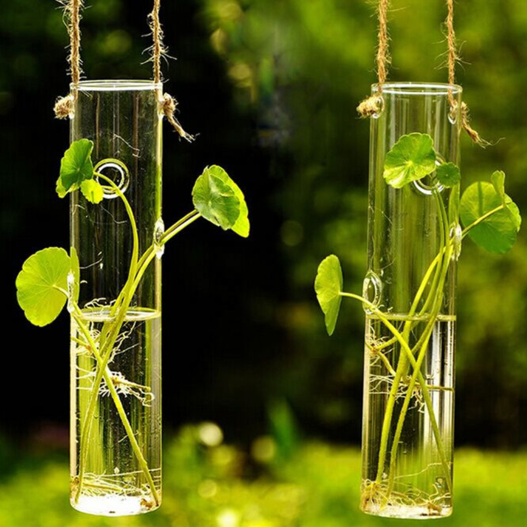 15 Elegant Clear Gel for Flower Vases