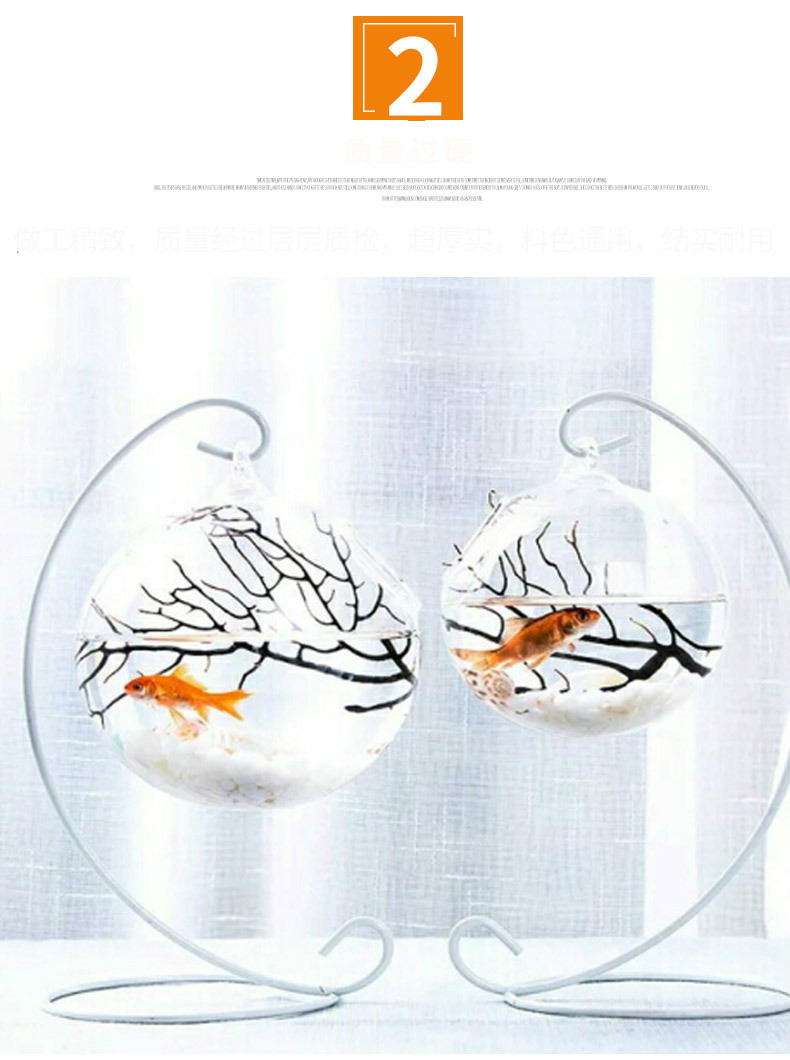 Clear Glass Fish Shaped Vase Of Mini Fish Tank Decoration Micro Landscape Hydroponic Ecological for Undefined