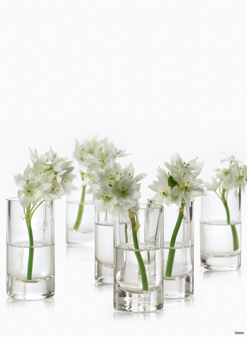 clear glass ginger jar vase of clear bud vases images clear medicine bottle bud vase set of 6 with regard to clear bud vases collection h vases small clear 3200 24 cafe collection bud 24piecesi 0d design
