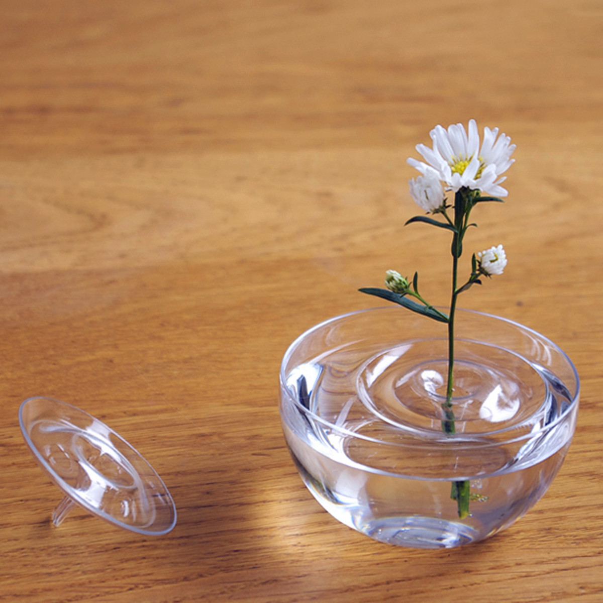 14 Great Clear Glass Rocks for Vases 2021 free download clear glass rocks for vases of test equipment clear floating plant vase plate dish creative water intended for clear floating plant vase plate dish creative water wave transparent glass bowl