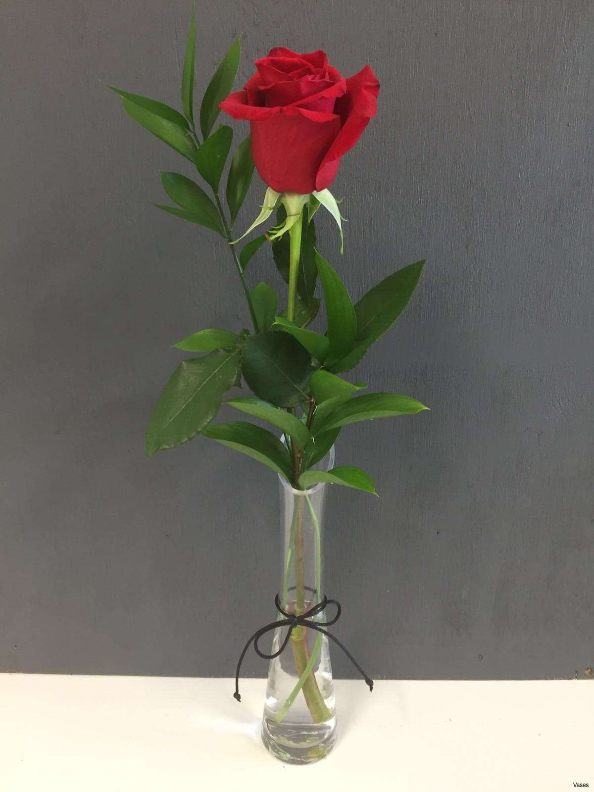 clear plastic bud vase of elegant roses in a vase pictures beginneryogaclassesnear me with roses red in a vase singleh vases rose single i 0d invasive design inspiration book