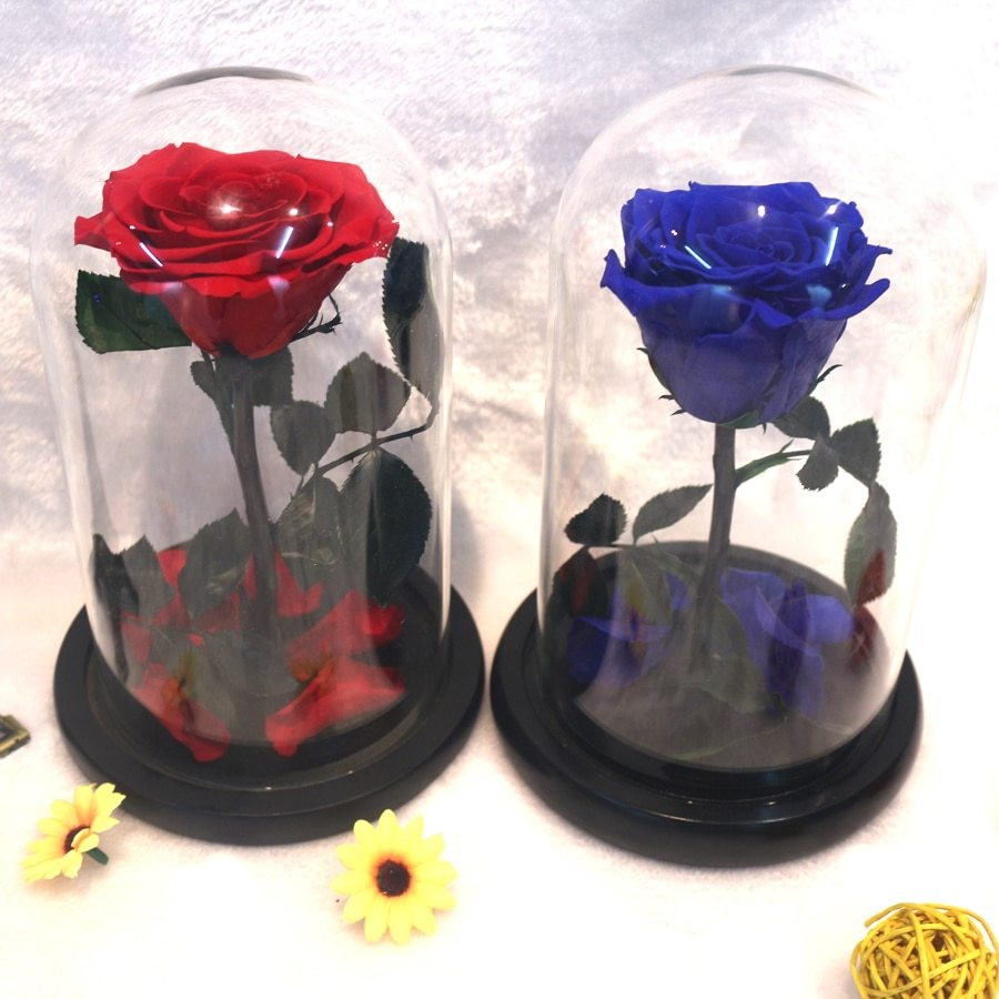 Cobalt Blue Glass Vases wholesale Of A'¤the Little Prince Glass Cover Preserved Rose Flower Immortal Red Throughout the Little Prince Glass Cover Preserved Rose Flower Immortal Red Roses for Valentines Day Christmas Wedding Gifts wholesale
