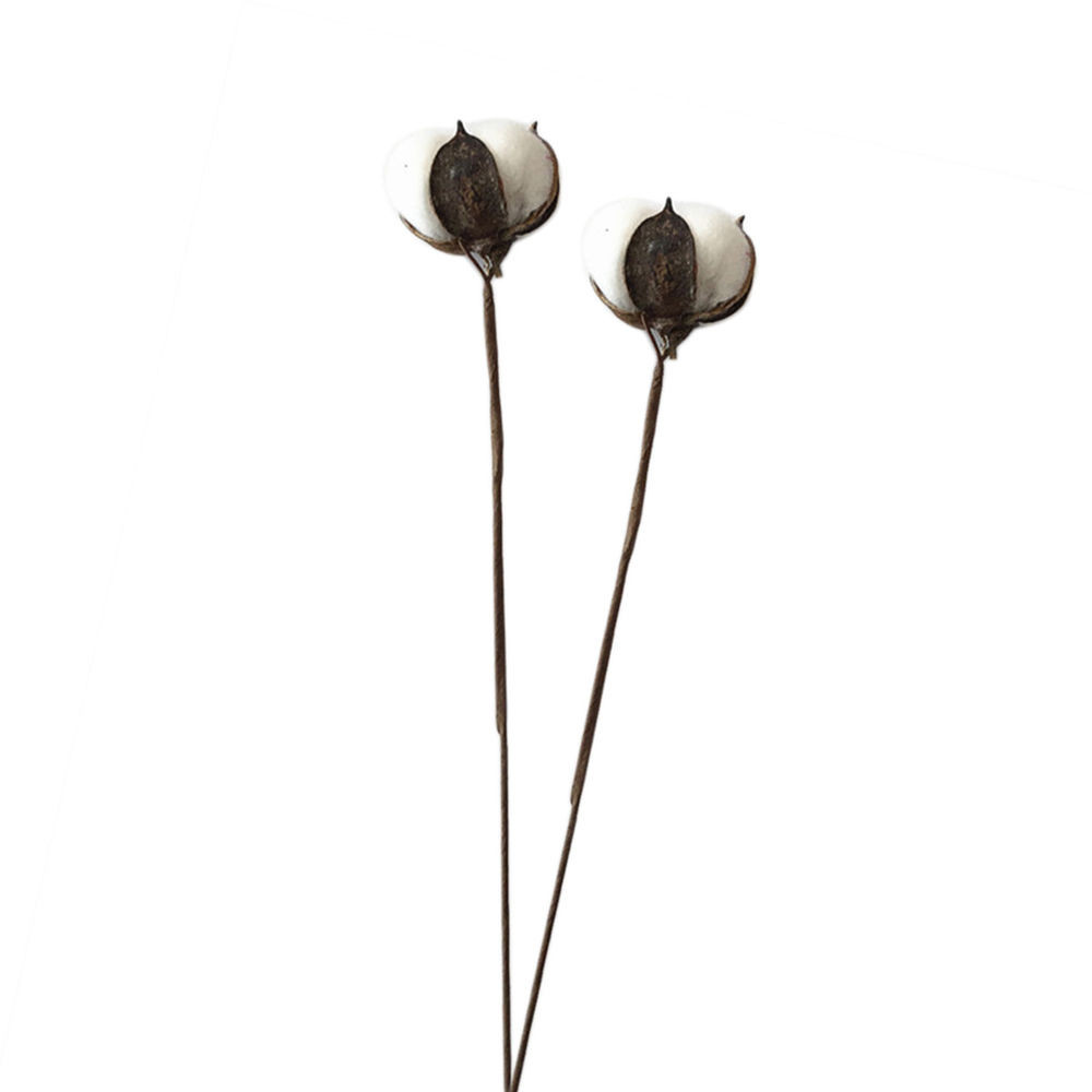 cotton stems in glass vase of 1pcs cotton stems single decorative cotton tree branch for home with regard to 1pcs cotton stems single decorative cotton tree branch for home wedding display 191599075880 ebay