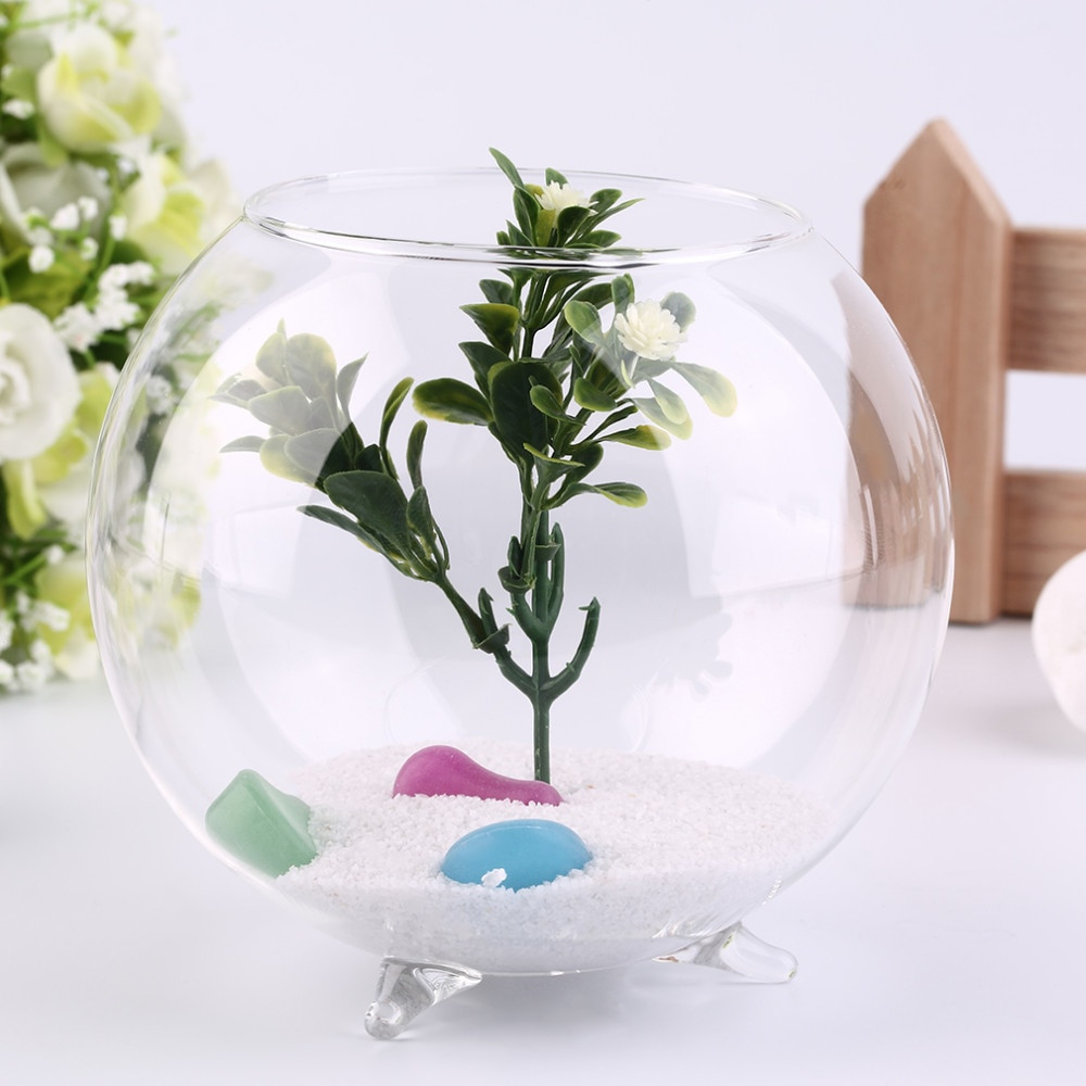 crystal flower vases for sale of tripod support round shape glass plant flower landscape vase with aeproduct