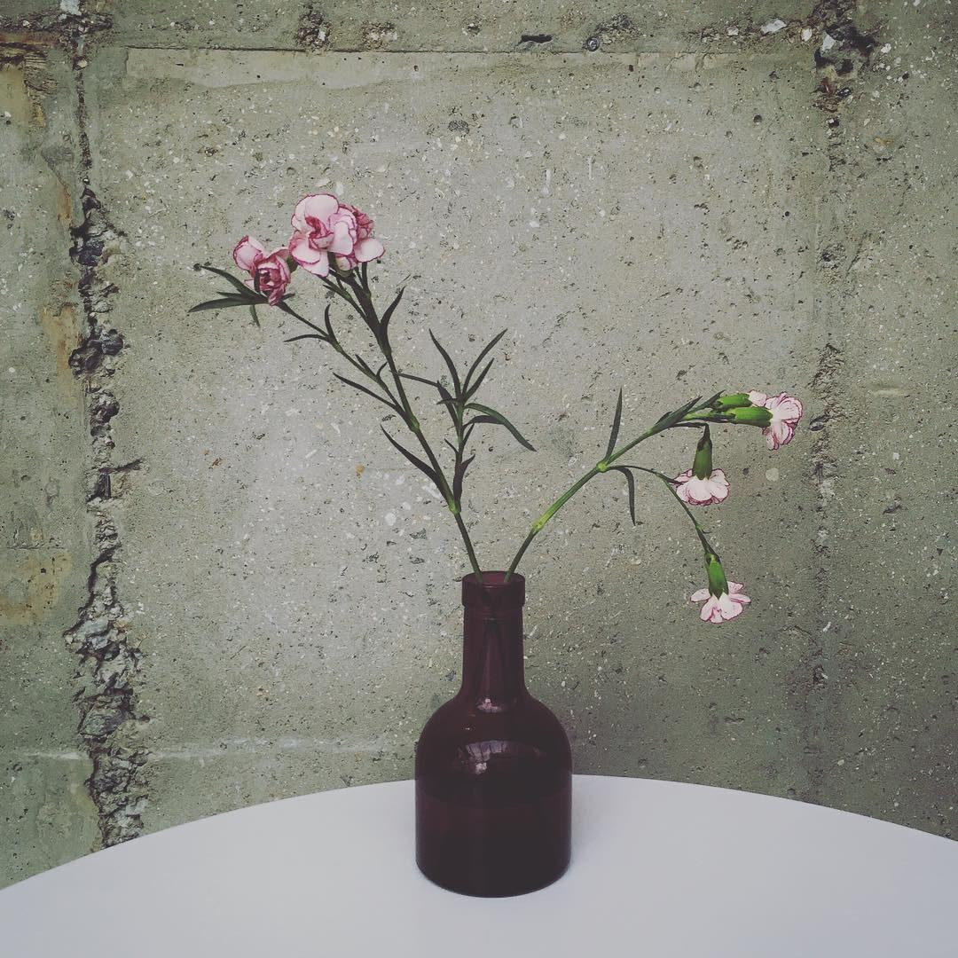 crystal vase florist austintown ohio of minimalfloral hash tags deskgram regarding when youve got this beautiful flower gray concrete and amazingly soft light its