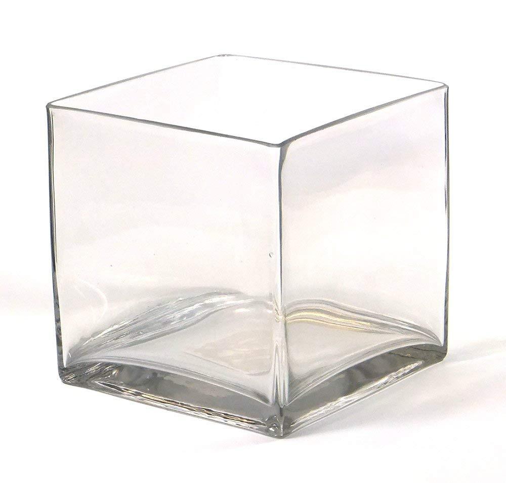 cube glass vase 6x6x6 of amazon com vasefill clear square glass vase cube 6 inch 6 x 6 x for amazon com vasefill clear square glass vase cube 6 inch 6 x 6 x 6 vases 6x6x6 home kitchen