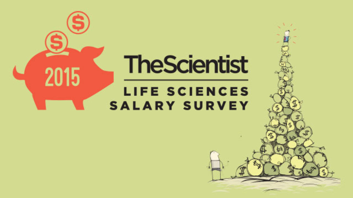 diamond vase filler plastic ice crystals of 2015 life sciences salary survey the scientist magazinea with salary survey l