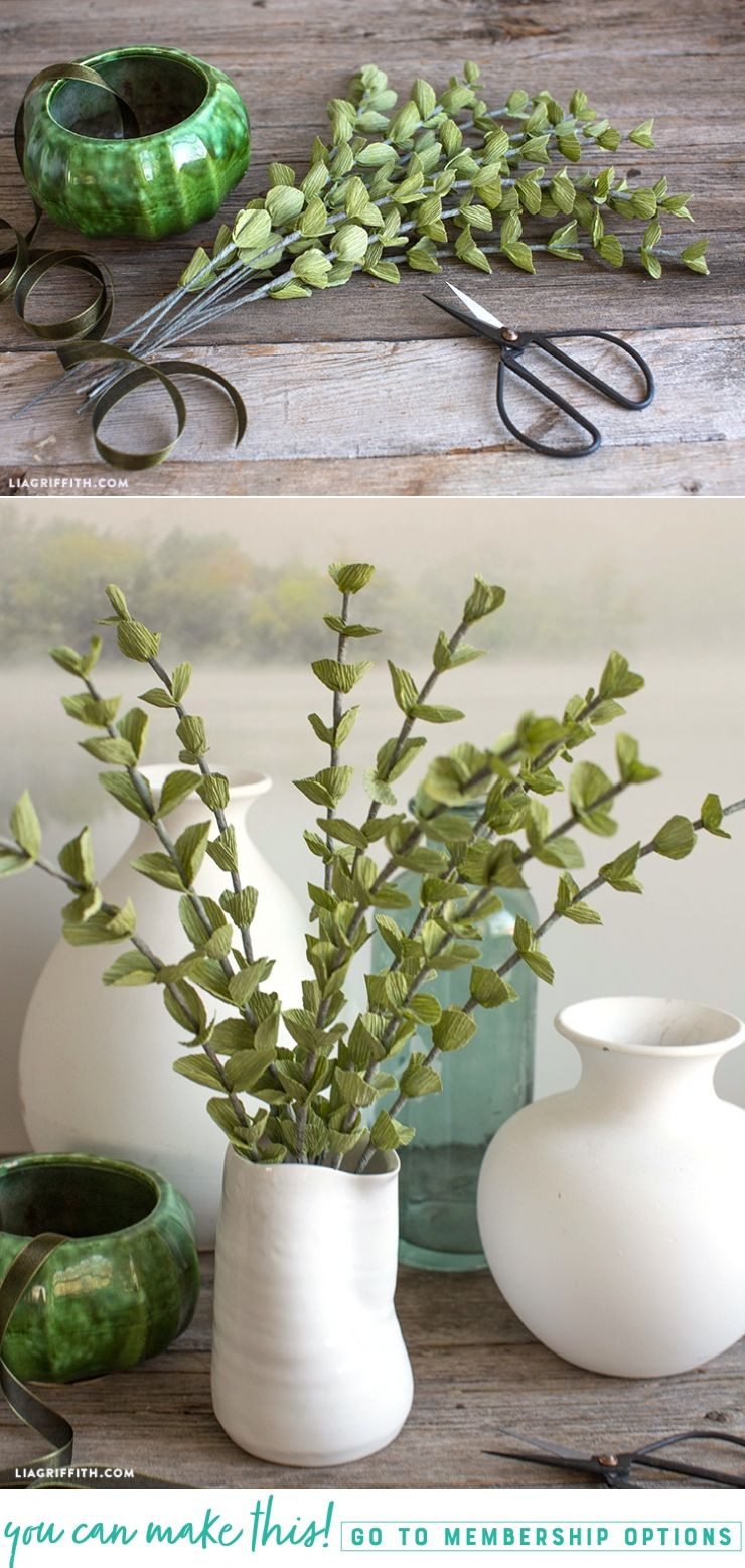 25 Lovely Eucalyptus Plant In Vase