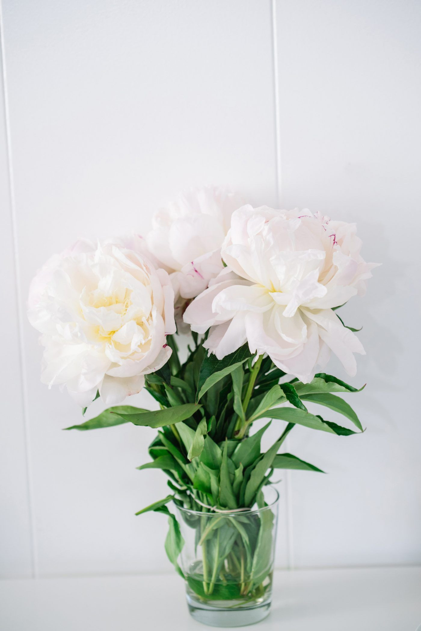 faux white peonies in vase of my favorite office accessories blossom pinterest flowers with regard to fresh peonies flowers for the office is a must
