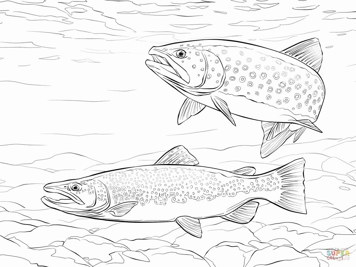 Fish In Vase Of 18 Luxury A Fish Coloring Page Oldmint Info Throughout A Fish Coloring Page Elegant Trout Coloring Page Heathermarxgallery Of 18 Luxury A Fish Coloring Page