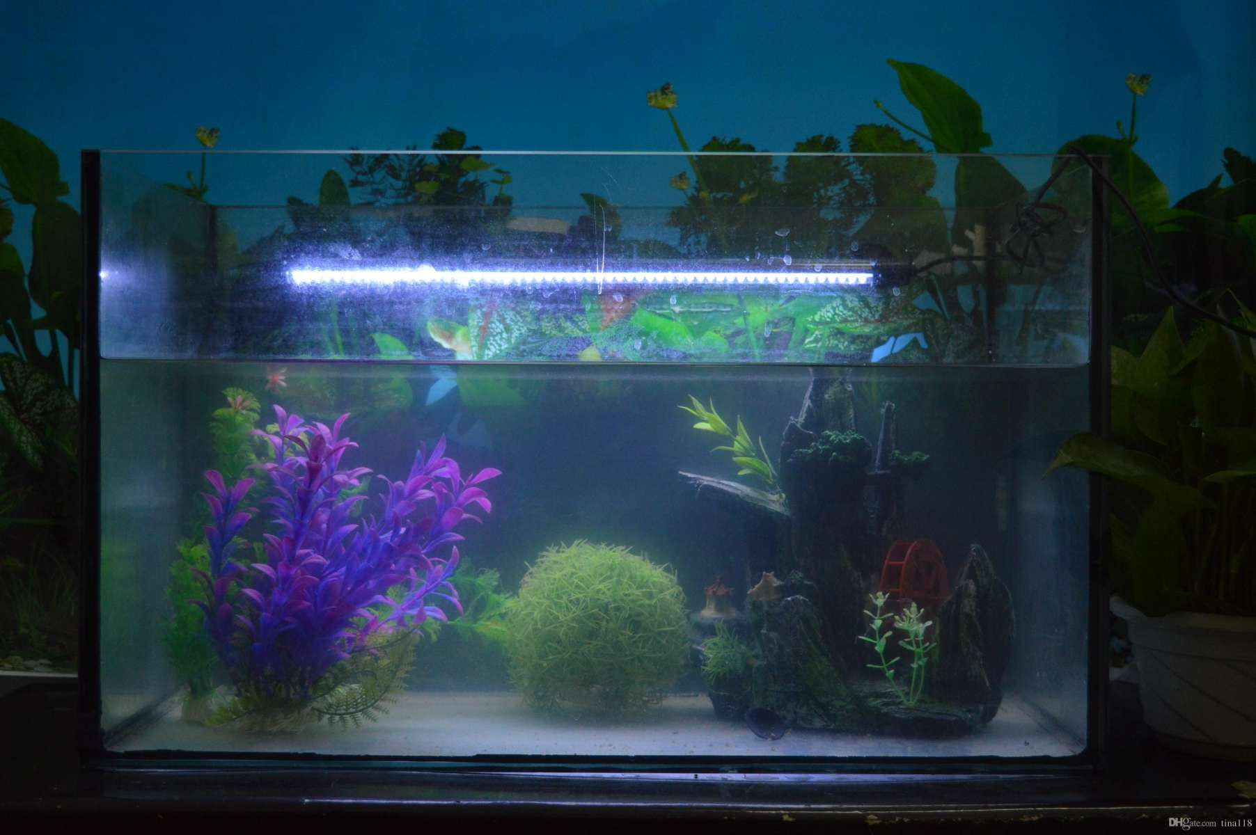 Fish In Vase Of Led Fishing Lights Fresh before New Hanging Lights Outdoor Regarding Led Fishing Lights Beautiful From Underwater Lights for Fish Tanks Beautiful Vases Waterproof Vase