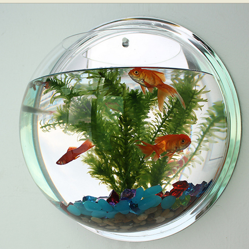 fish shaped glass vase of hot sale semicircular wall hanging glass plant flower vase with regard to 2018 pot plant wall mounted hanging bubble bowl fish tank aquarium home art decor set clear