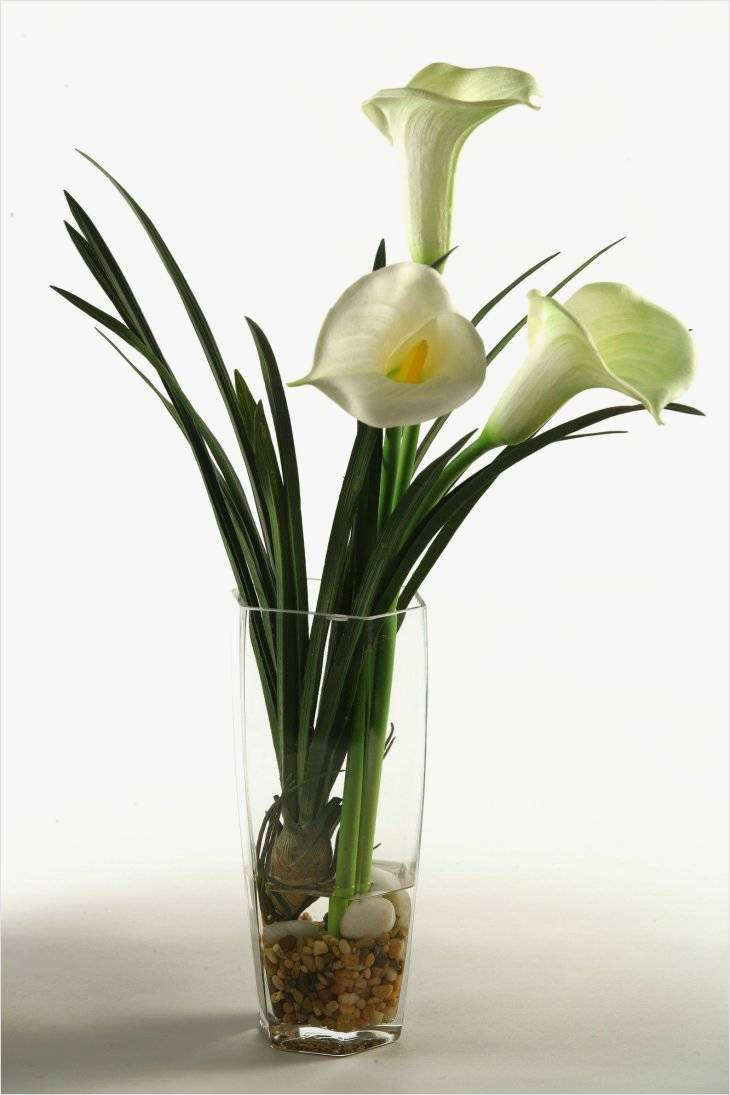 floral supply vases of famous inspiration on glass flower vase for contemporary decorating regarding fresh design on glass flower vase for deco living room this is so amazingly glass