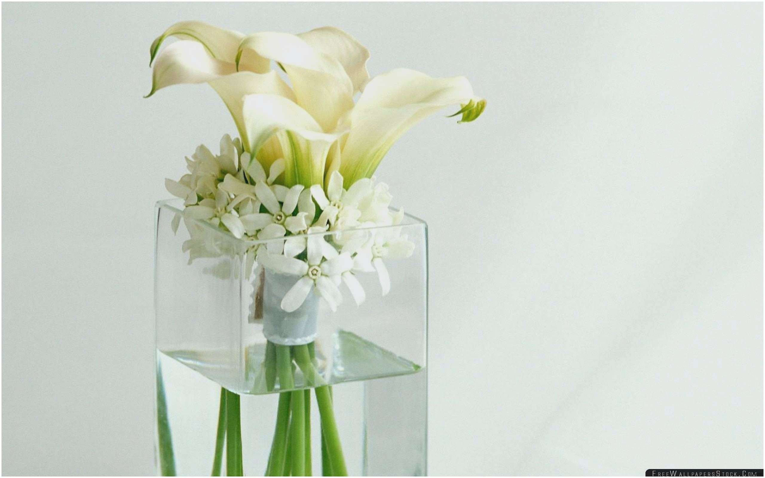 flower bulb vase of 25 add value tulip garden ideas newyorkrevolution org throughout tall vase centerpiece ideas vases flowers in water 0d artificial inspiration glass vase centerpiece ideas