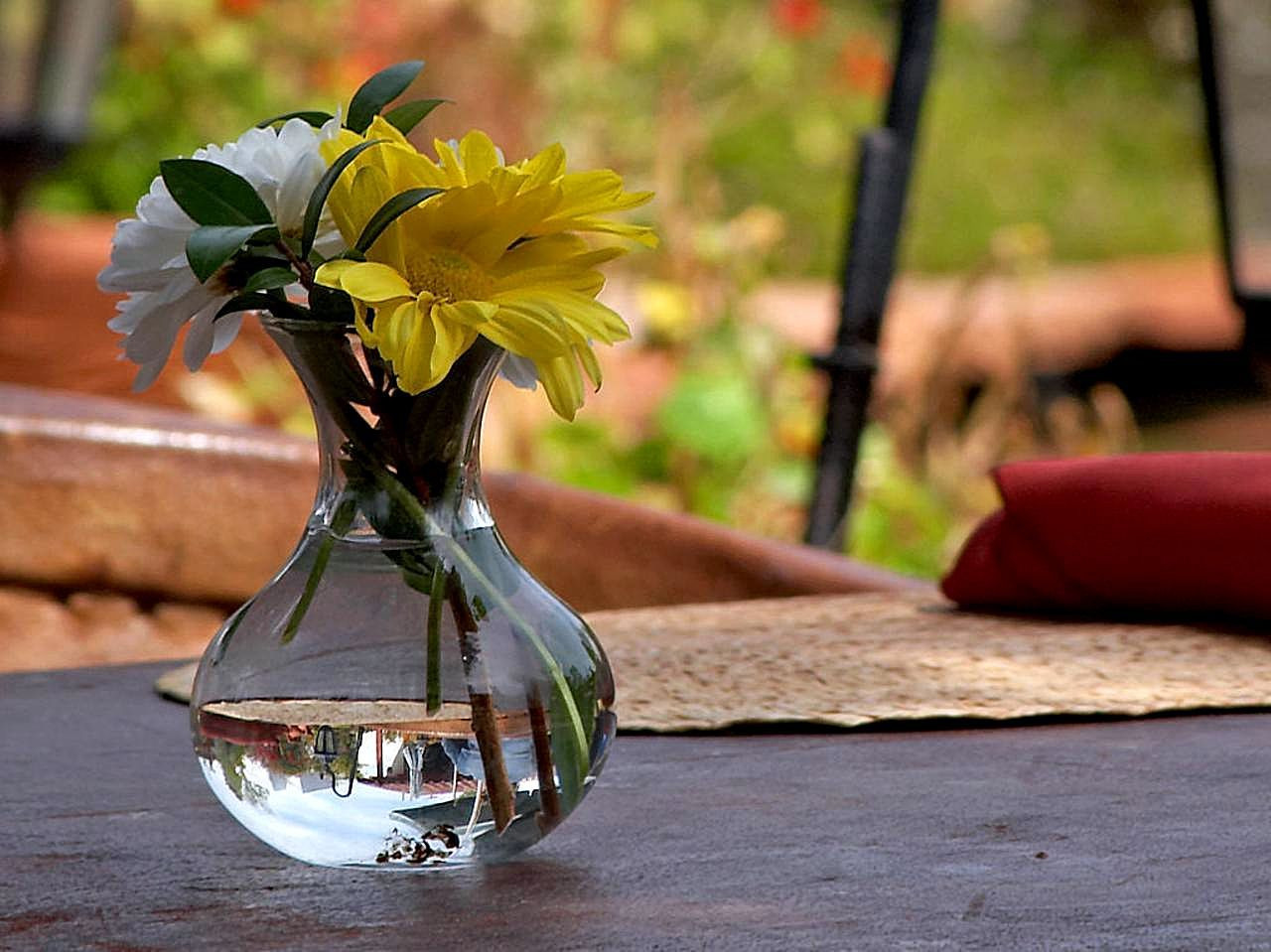 flower in water vase centerpiece of popular cut flowers types arrangements life of cut flowers in most cut flowers are popular choices as gifts on special occasions either as a single cut flower or as a bunch or a bouquet of cut flowers