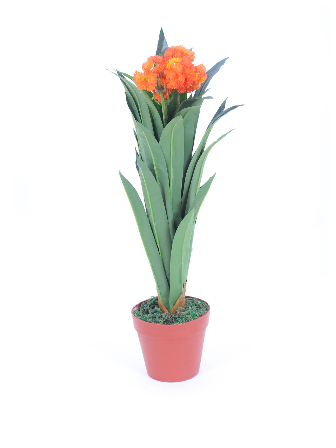 Flower Vase Online India Of Artificial Artificial Flowers and Plants Shirts Buy Artificial Throughout Decorative Artificial Plant